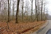 Home for sale: 00 Lot 40 & 41 Dale Hollow Estate Rd., Byrdstown, TN 38549