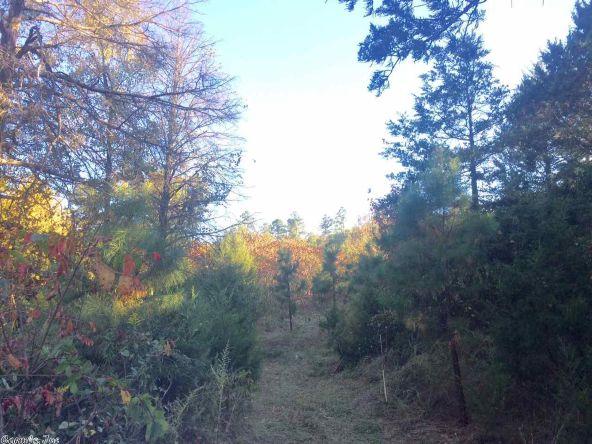 17430 Forest Service Rd. 18, Havana, AR 72842 Photo 10