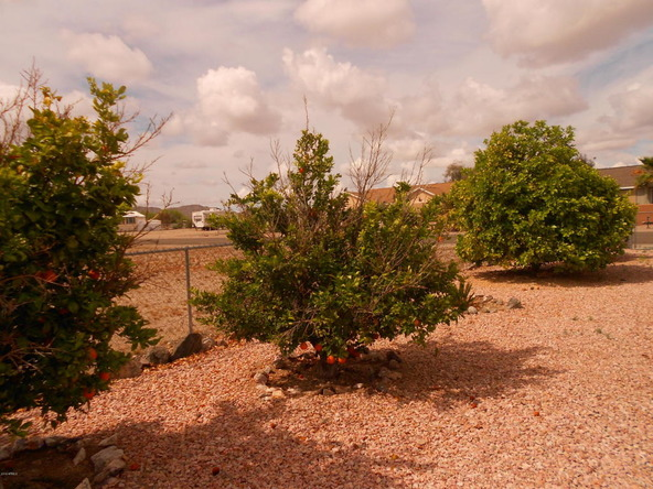 66890 Prose Ln., Salome, AZ 85348 Photo 49