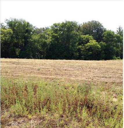 5791 Serenity Dr. Lot 14, Mount Vernon, IN 47620 Photo 32