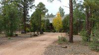 Home for sale: 220 Silktassel Rd., Show Low, AZ 85901