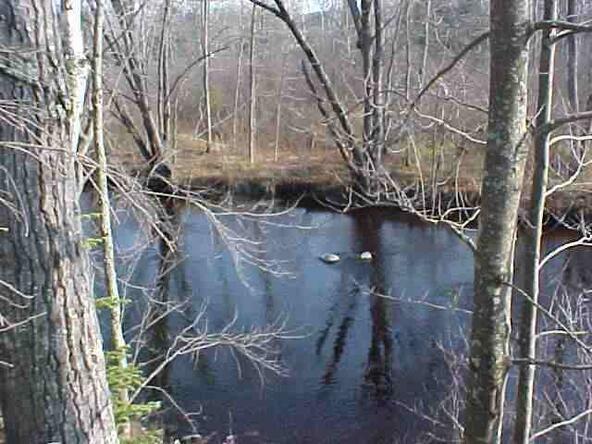 Lot 5 Wood Duck Ln., Merrill, WI 54452 Photo 4