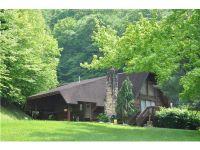 Home for sale: 187 Poplar Hills Rd., Danville, WV 25053