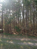 Home for sale: 0 Hwy. 15 North, Sumter, SC 29150