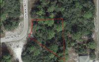 Home for sale: 620 Jupiter Ave. N.W., Lake Placid, FL 33852