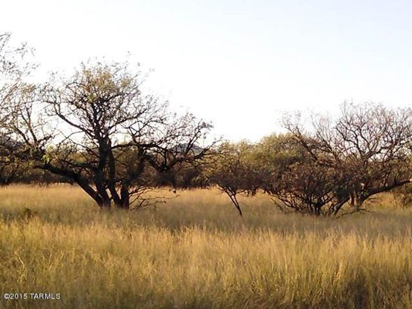16005 Ranger Rd., Arivaca, AZ 85601 Photo 2