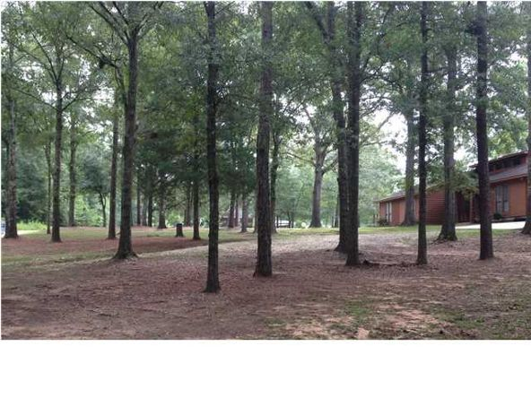 8231 South Maple Valley Rd., Semmes, AL 36575 Photo 18