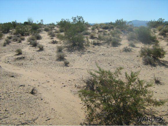 16235 S. Shep Ln. S, Yucca, AZ 86438 Photo 3