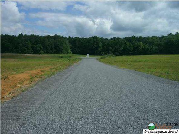 9 County Rd. 743, Scottsboro, AL 35768 Photo 4
