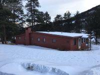 Home for sale: 2862 Fall River Rd., Estes Park, CO 80517