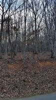 Home for sale: Magnolia Rd. Lot 6, Bedford, VA 24523