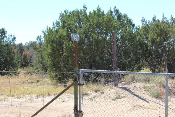 7209 N. Hwy. 191 --, Sanders, AZ 86512 Photo 20