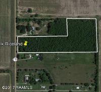 Home for sale: 2400 Blk Riceland Rd., Duson, LA 70529