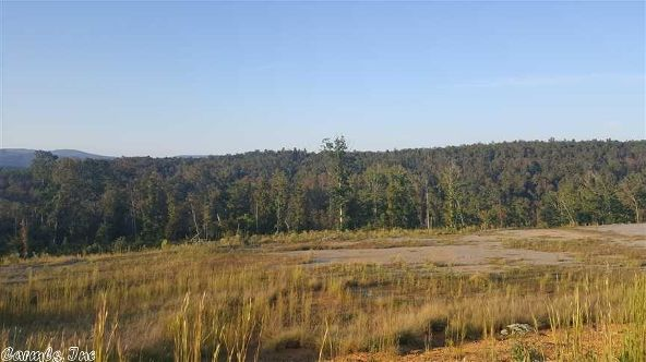 515 Ginger Rd., Scotland, AR 72141 Photo 2