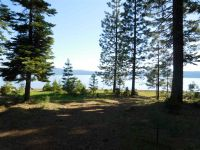 Home for sale: 239 Lake Almanor West Dr., Chester, CA 96020