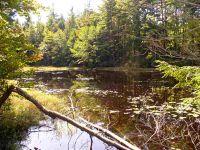 Home for sale: Off Rockwood Pond Rd., Troy, NH 03465