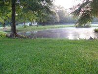 Home for sale: 4133 Hamp Lea Rd., Magnolia, MS 39652