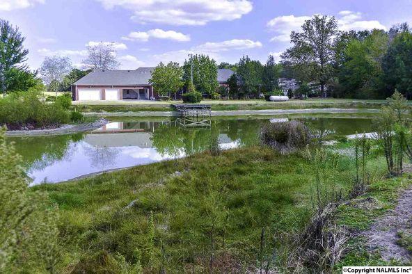 194 County Rd. 380, Decatur, AL 35603 Photo 50
