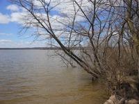 Home for sale: Lot 6 Oak Dr., Briggsville, WI 53920