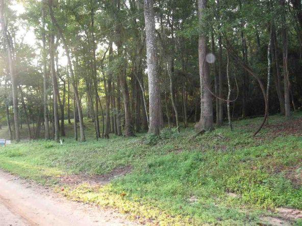 00 Tau Trail, Monticello, FL 32344 Photo 5