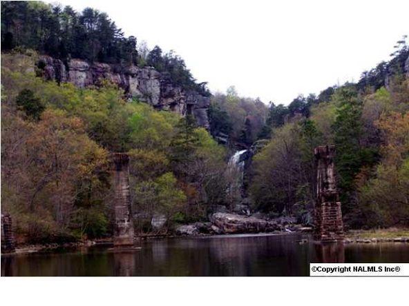 217 River Ridge Dr., Cedar Bluff, AL 35959 Photo 14