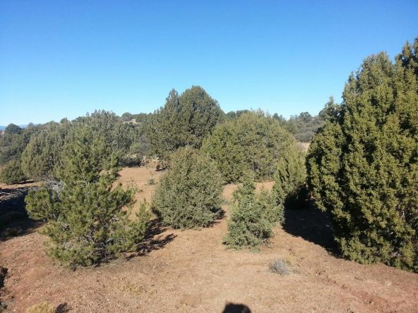 4050 W. Young Rd., Prescott, AZ 86305 Photo 17