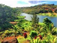 Home for sale: 2900-G Kamookoa Rd., Kilauea, HI 96754