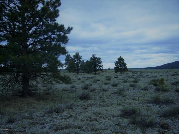 10558 E. White Horse Lake, Parks, AZ 86018 Photo 23