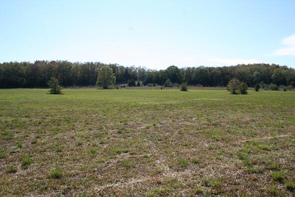 278 Hwy. 64 East, Conway, AR 72032 Photo 9