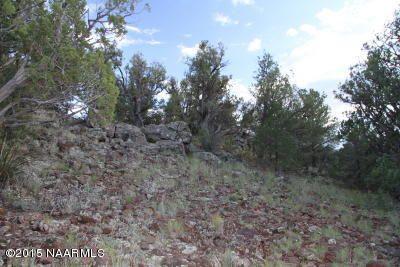 957 Westwood Ranch, Seligman, AZ 86337 Photo 13