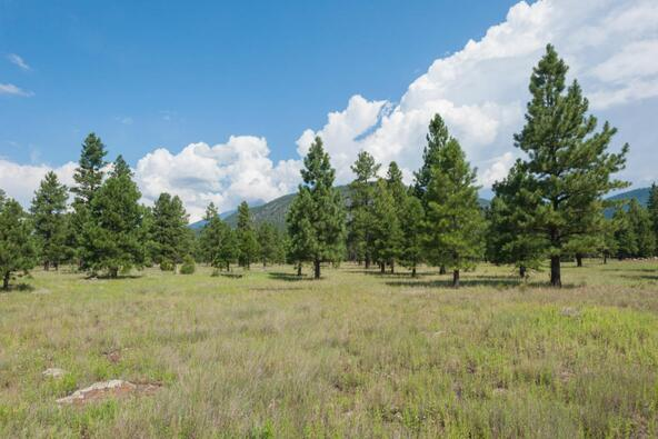 8r Lockett Ranches, Flagstaff, AZ 86001 Photo 21