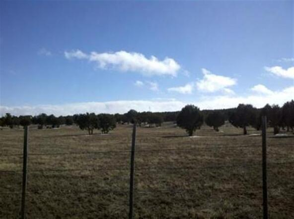 5 Or 10 Ac Turkey Lake Rd., Show Low, AZ 85901 Photo 6