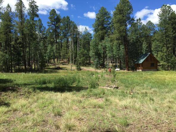 29 Cr 2266, Alpine, AZ 85920 Photo 19