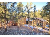 Home for sale: 12 Druid Trail Trail, Florissant, CO 80816