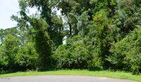 Home for sale: 9 Pinebark Ct., Carolina Shores, NC 28467
