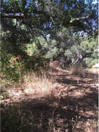 2171 San Luis Dr., San Luis Obispo, CA 93401 Photo 7