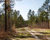 Home for sale: Waynesboro, GA 30830