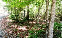Home for sale: Lot 4 Paul Nicholson Rd., Blairsville, GA 30512