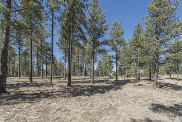2431 E. del Rae Dr. #181, Flagstaff, AZ 86001 Photo 7