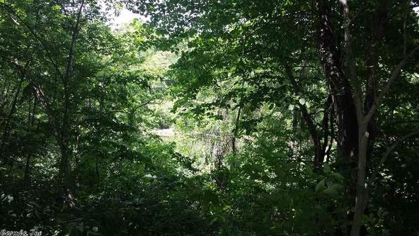 4215 Libby Rd., Heber Springs, AR 72543 Photo 33
