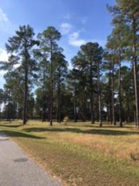 Home for sale: Lot 30 Cannon Branch Rd., Cordele, GA 31015