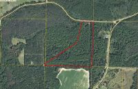 Home for sale: Fowler Rd., Graceville, FL 32440