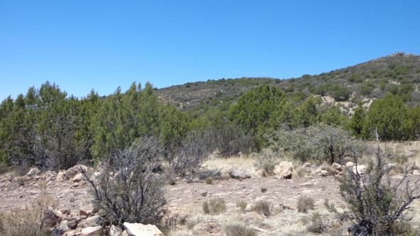 1104 Westwood Ranch Lot 1104, Seligman, AZ 86337 Photo 23