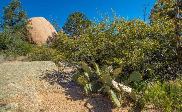 9880 N. Clear Fork Rd., Prescott, AZ 86305 Photo 78
