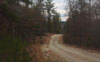 Home for sale: Tbd Wild Oaks Ct., Blairsville, GA 30512