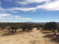 Home for sale: 37910 Montezuma Valley Rd., Ranchita, CA 92066