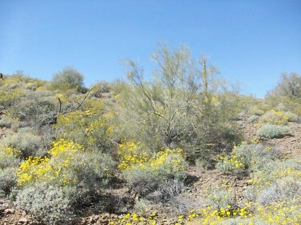33404 N. 5th St., Phoenix, AZ 85085 Photo 10