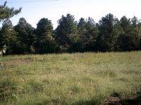 Home for sale: Boyles Mill Rd., Dalton, GA 30721