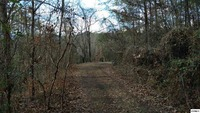 Home for sale: 1.83 Acres Bueno Vale, Cosby, TN 37722