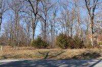 Home for sale: 228 Old Farm Rd., Harrison, AR 72601